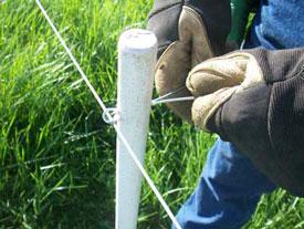 Pasturepro 1 1 4 Quot X 66 Quot Proline Fence Post White Ruralmfg Com