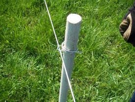 Pasturepro 1 1 8 Quot X 48 Quot Proline Fence Post White