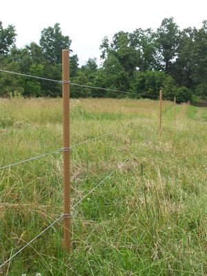 Pasturepro 1 Quot X 48 Quot Fence Dropper Stay Ruralmfg Com